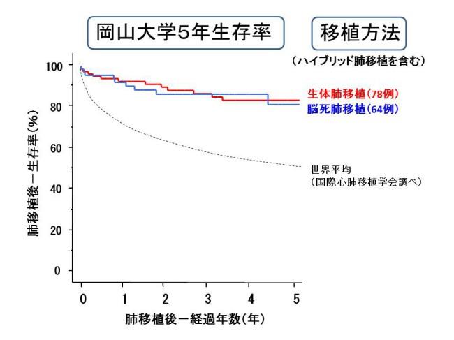岡山大学5年生存率 移植法