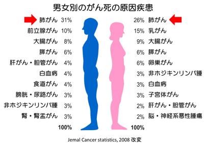 男女別のがん死の原因疾患